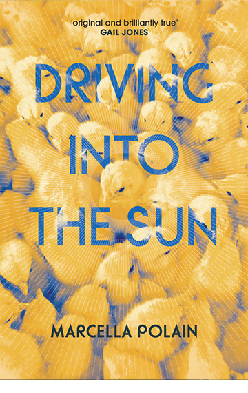 Driving into the Sun – Marcella Polain